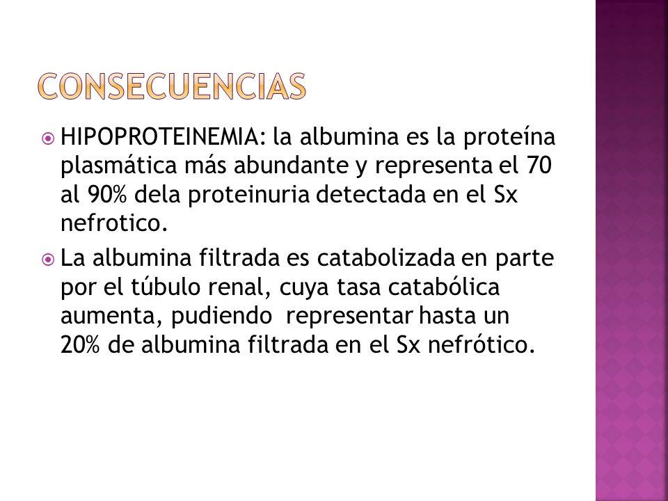 HIPOPROTEINEMIA: la albumina es la proteína plasmática más abundante y representa el 70 al 90% dela proteinuria detectada en el Sx nefrotico. La album