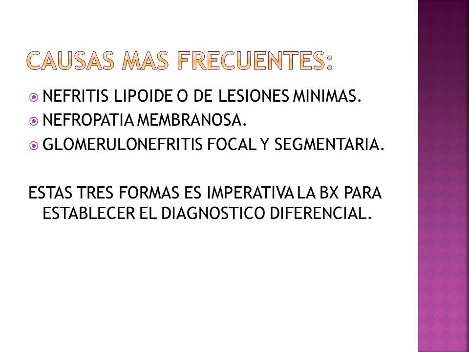ANAMNESIS, antecedentes, signos, síntomas de enfermedad sistémica (LES, vasculitis, amiloidosis, DM).