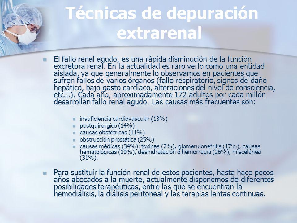Técnicas de depuración extrarenal El fallo renal agudo, es una rápida disminución de la función excretora renal. En la actualidad es raro verlo como u