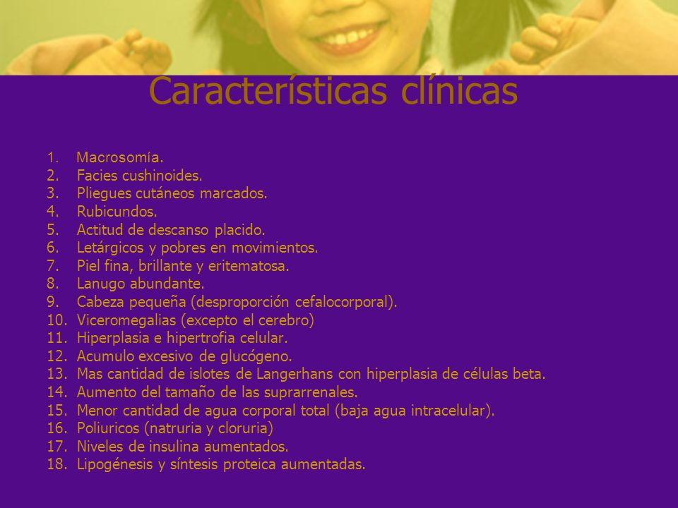 Características clínicas 1. Macrosomía. 2. Facies cushinoides. 3. Pliegues cutáneos marcados. 4. Rubicundos. 5. Actitud de descanso placido. 6. Letárg