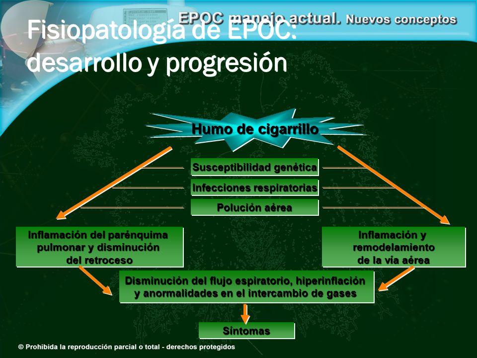 SíntomasSíntomas Susceptibilidad genética Infecciones respiratorias Polución aérea Humo de cigarrillo Inflamación y remodelamiento de la vía aérea Inf