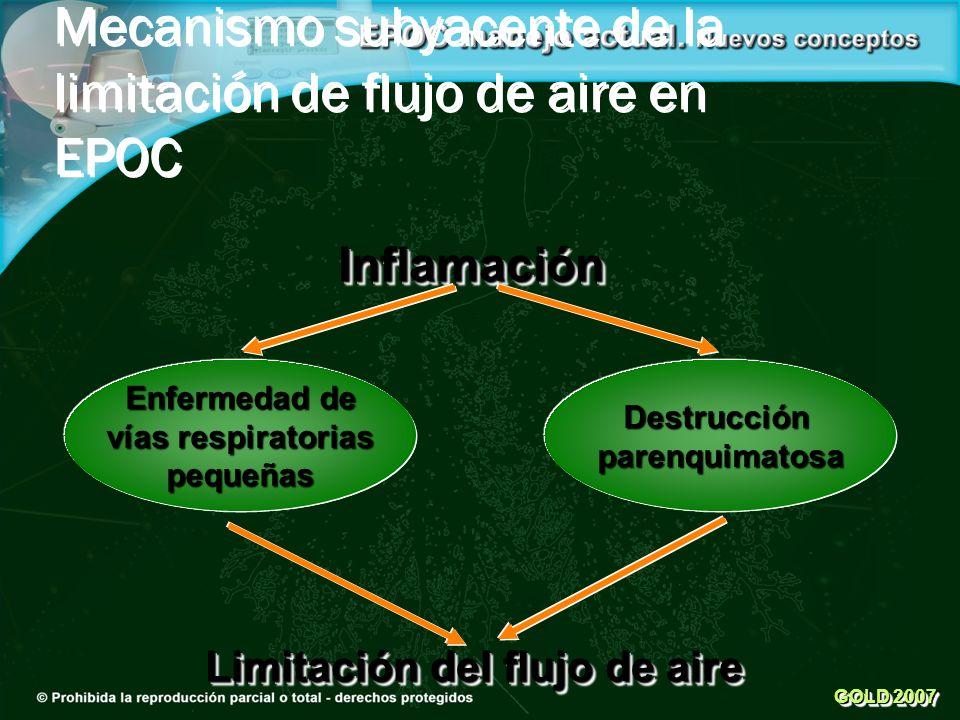 Inflamación Destrucciónparenquimatosa Limitación del flujo de aire GOLD 2007 Mecanismo subyacente de la limitación de flujo de aire en EPOC Enfermedad