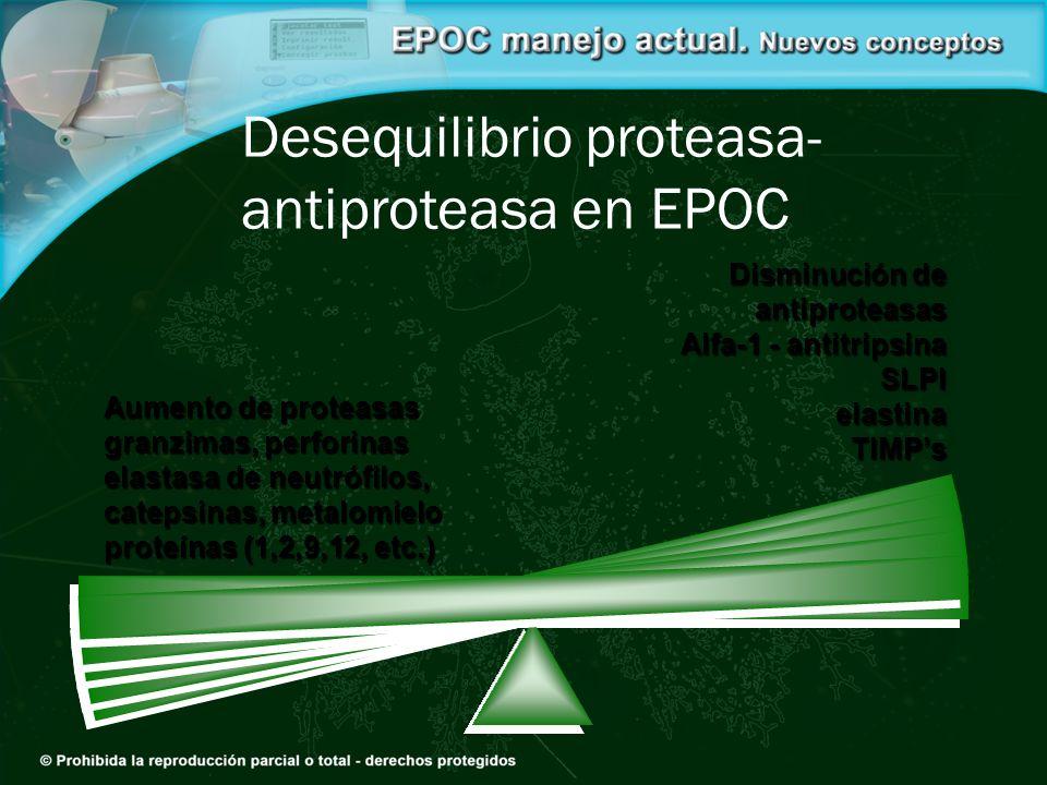 Desequilibrio proteasa- antiproteasa en EPOC Aumento de proteasas granzimas, perforinas elastasa de neutrófilos, catepsinas, metalomielo proteínas (1,