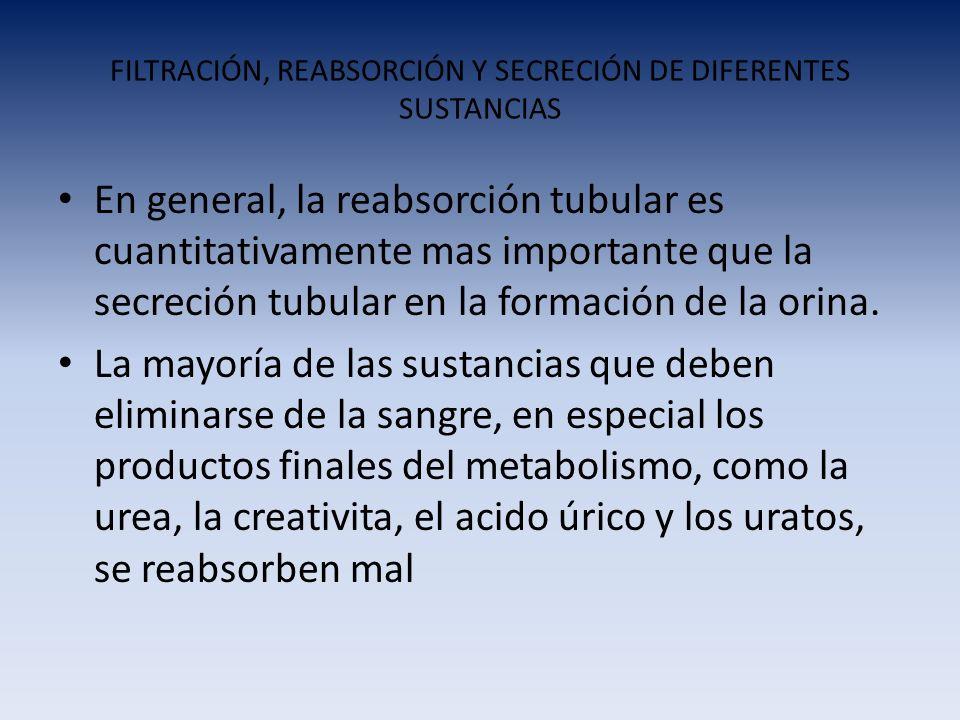 FILTRACIÓN, REABSORCIÓN Y SECRECIÓN DE DIFERENTES SUSTANCIAS En general, la reabsorción tubular es cuantitativamente mas importante que la secreción t