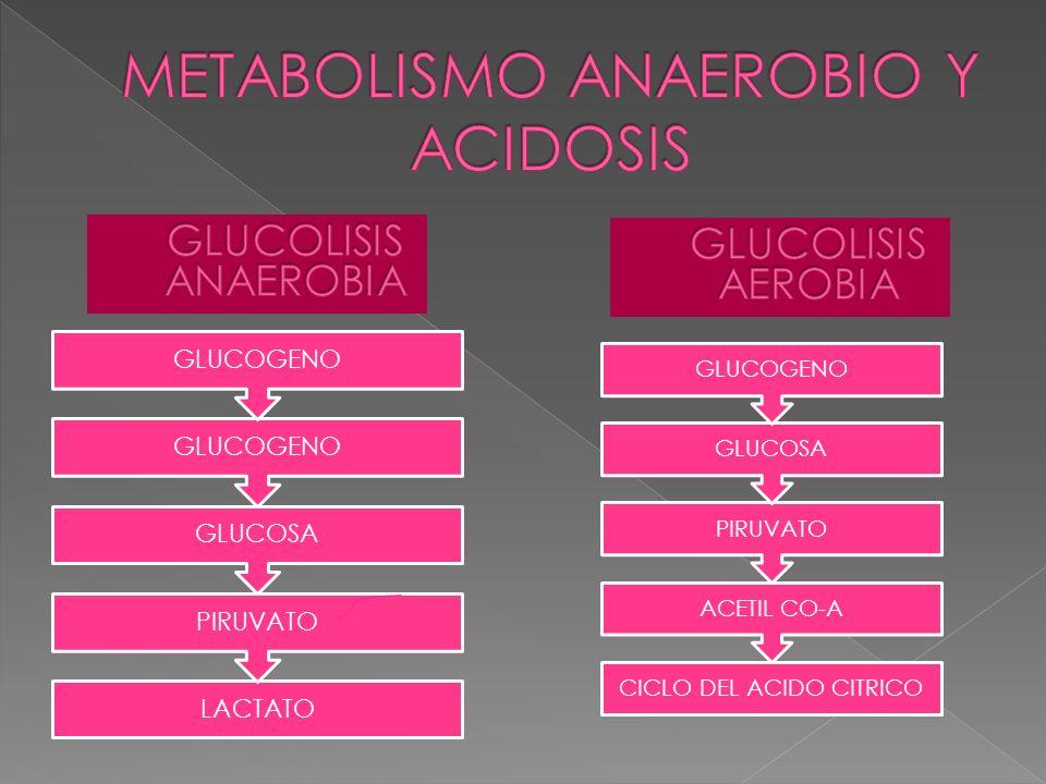 LIQUIDOS.INOTROPICOS SIMPATOMIMETICOS: DOBUTAMINA, DOPAMINA Y ADRENALINA.