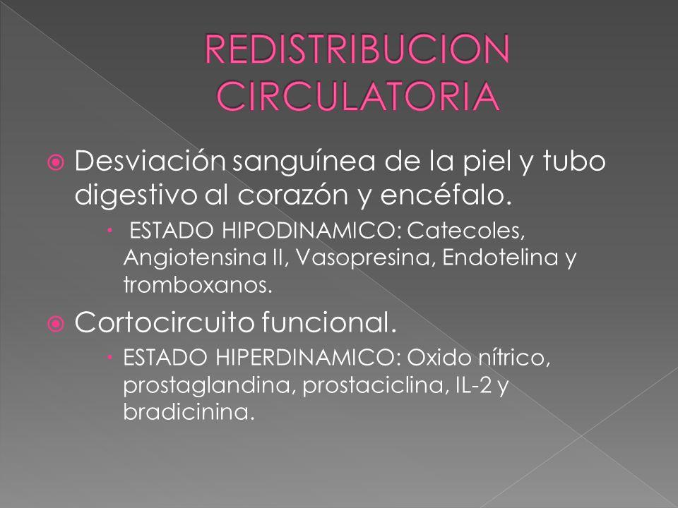 Desviación sanguínea de la piel y tubo digestivo al corazón y encéfalo. ESTADO HIPODINAMICO: Catecoles, Angiotensina II, Vasopresina, Endotelina y tro
