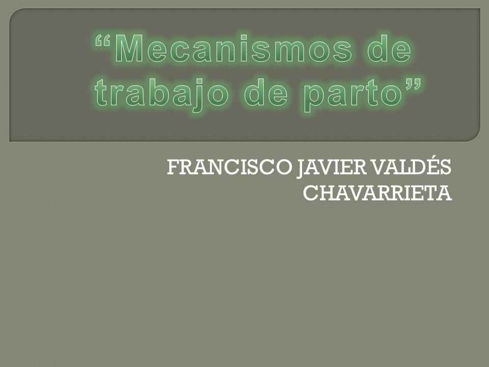 FRANCISCO JAVIER VALDÉS CHAVARRIETA