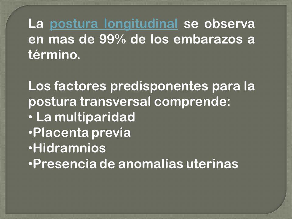 La postura longitudinal se observa en mas de 99% de los embarazos a término. Los factores predisponentes para la postura transversal comprende: La mul