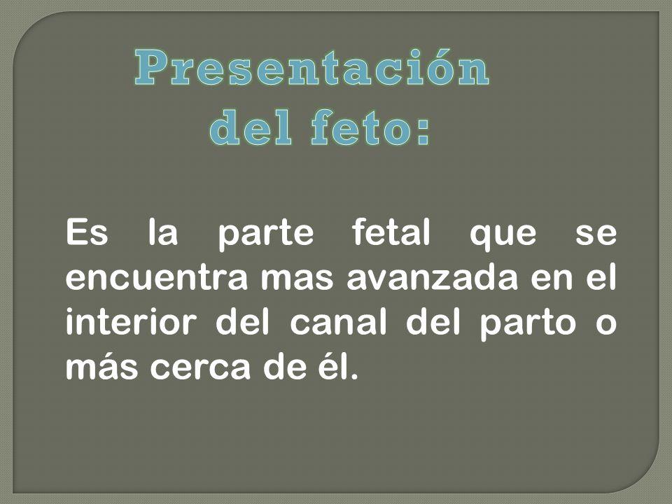 Es la parte fetal que se encuentra mas avanzada en el interior del canal del parto o más cerca de él.