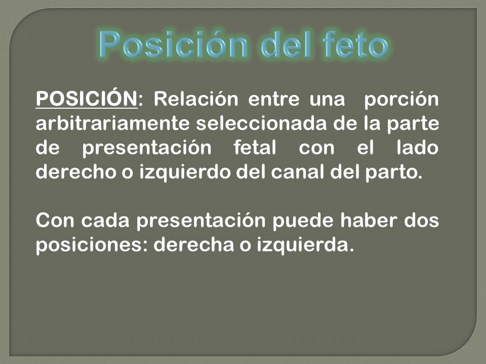POSICIÓN: Relación entre una porción arbitrariamente seleccionada de la parte de presentación fetal con el lado derecho o izquierdo del canal del parto.