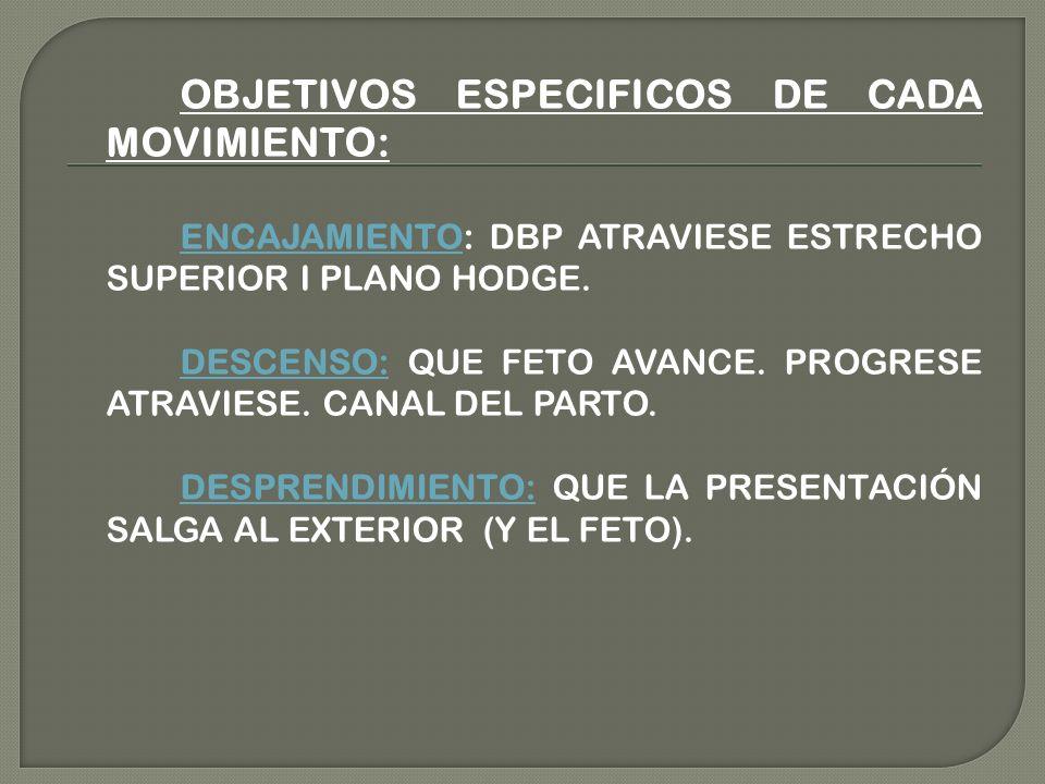 OBJETIVOS ESPECIFICOS DE CADA MOVIMIENTO: ENCAJAMIENTO: DBP ATRAVIESE ESTRECHO SUPERIOR I PLANO HODGE. DESCENSO: QUE FETO AVANCE. PROGRESE ATRAVIESE.