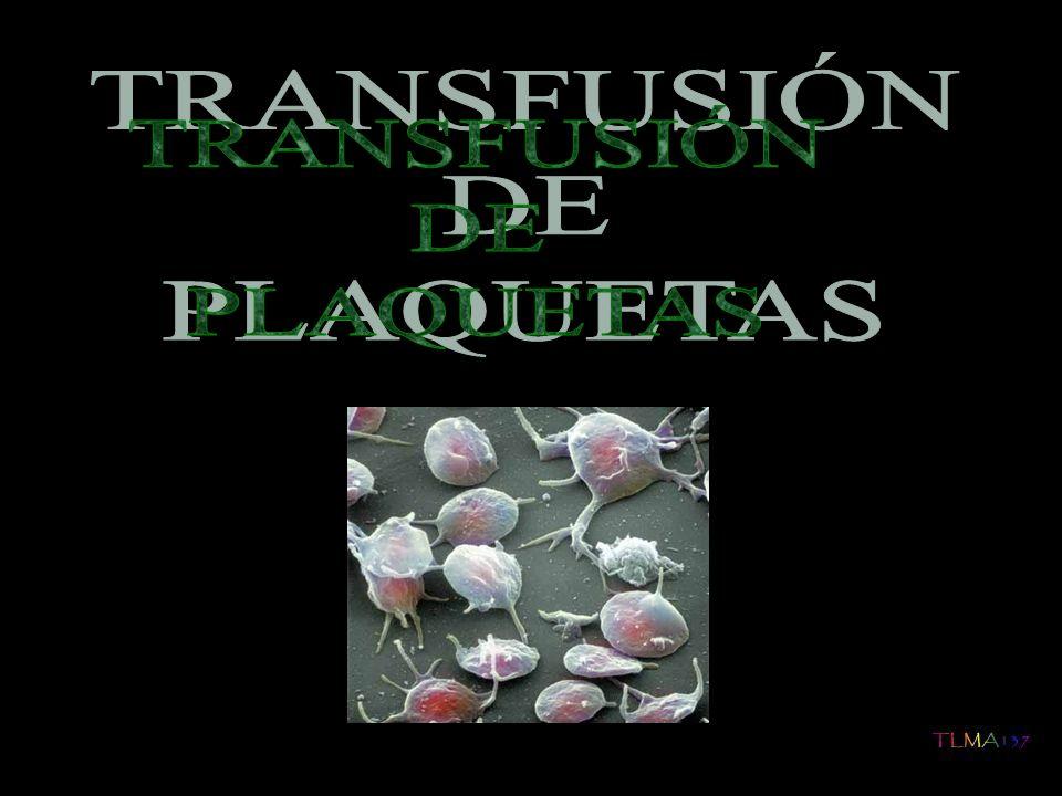 Las guías para transfusión de concentrado de plaquetas en niños son una adaptación de las guías confeccionadas para adultos La transfusión de plaquetas no esta indicada de forma rutinaria en la trombopenia inmune o púrpura trombopénica idiopática
