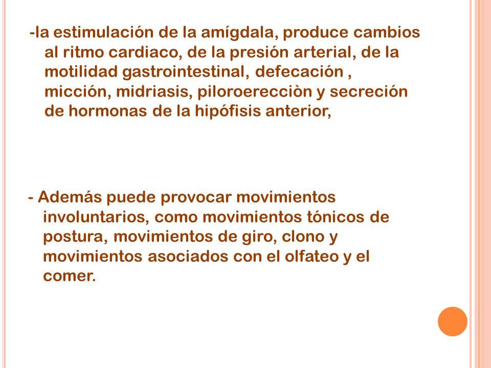 -la estimulación de la amígdala, produce cambios al ritmo cardiaco, de la presión arterial, de la motilidad gastrointestinal, defecación, micción, midriasis, piloroerecciòn y secreción de hormonas de la hipófisis anterior, - Además puede provocar movimientos involuntarios, como movimientos tónicos de postura, movimientos de giro, clono y movimientos asociados con el olfateo y el comer.