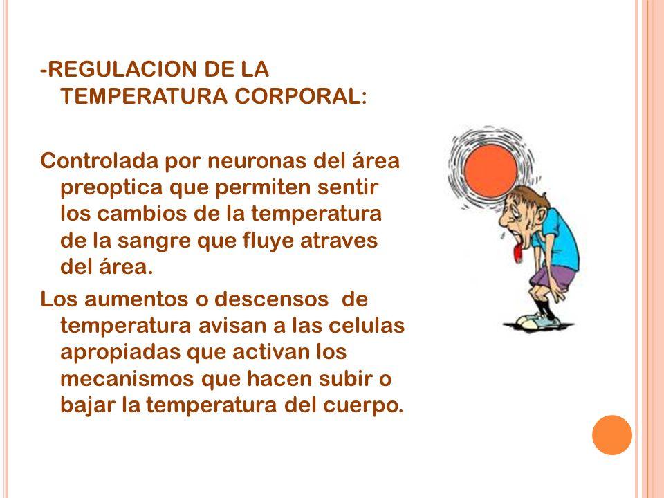 -REGULACION DE LA TEMPERATURA CORPORAL: Controlada por neuronas del área preoptica que permiten sentir los cambios de la temperatura de la sangre que