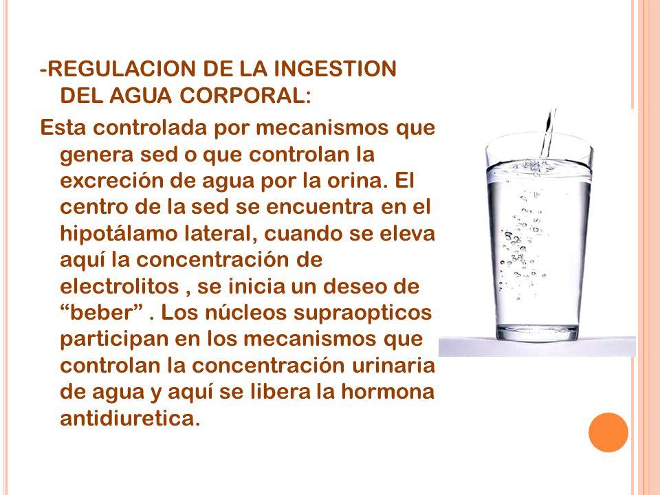 -REGULACION DE LA INGESTION DEL AGUA CORPORAL: Esta controlada por mecanismos que genera sed o que controlan la excreción de agua por la orina.