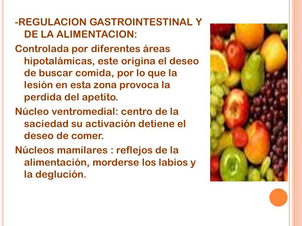 -REGULACION GASTROINTESTINAL Y DE LA ALIMENTACION: Controlada por diferentes áreas hipotalámicas, este origina el deseo de buscar comida, por lo que la lesión en esta zona provoca la perdida del apetito.