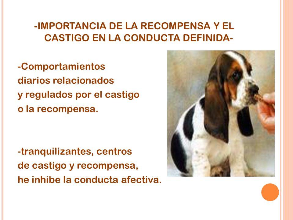 -IMPORTANCIA DE LA RECOMPENSA Y EL CASTIGO EN LA CONDUCTA DEFINIDA- -Comportamientos diarios relacionados y regulados por el castigo o la recompensa.