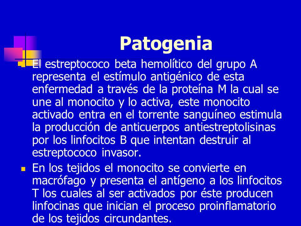 Patogenia El estreptococo beta hemolítico del grupo A representa el estímulo antigénico de esta enfermedad a través de la proteína M la cual se une al