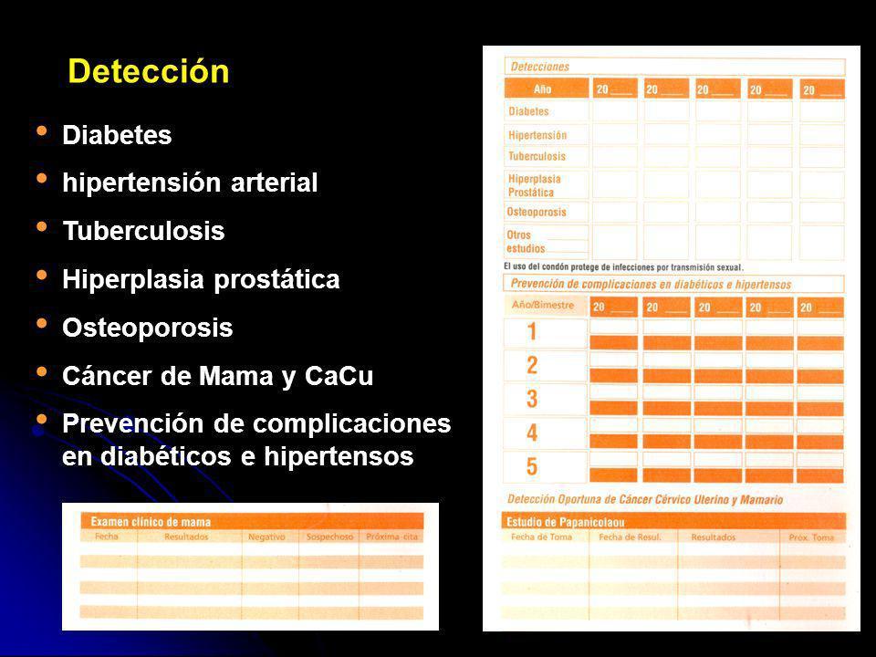Diabetes hipertensión arterial Tuberculosis Hiperplasia prostática Osteoporosis Cáncer de Mama y CaCu Prevención de complicaciones en diabéticos e hip