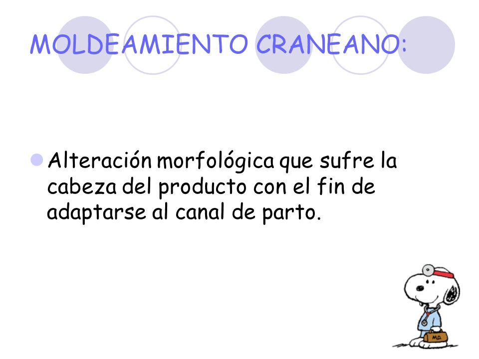 MOLDEAMIENTO CRANEANO: Alteración morfológica que sufre la cabeza del producto con el fin de adaptarse al canal de parto.