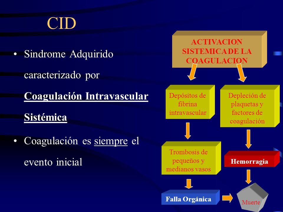 Mecanismos Anticoagulantes Antitrombin III (AT III): –El mayor inhibidor de la cascada de coagulación. Inhibe la Trombina Inhibe los factores activado