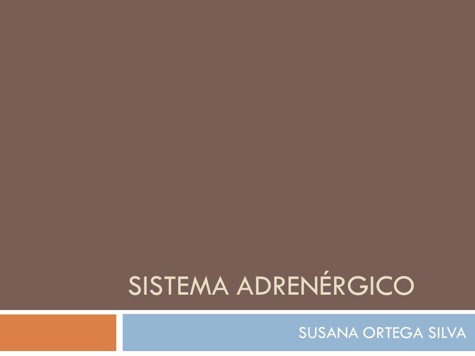 ALMACENAMIENTO Y DEPÓSITO LAS CATECOLAMINAS SE ENCUENTRAN ALMACENADAS EN GRÁNULOS O VESÍCULAS.