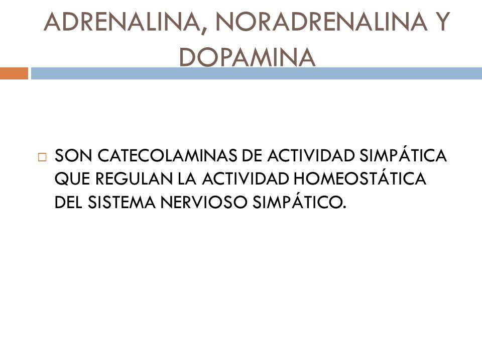 ADRENALINA, NORADRENALINA Y DOPAMINA SON CATECOLAMINAS DE ACTIVIDAD SIMPÁTICA QUE REGULAN LA ACTIVIDAD HOMEOSTÁTICA DEL SISTEMA NERVIOSO SIMPÁTICO.