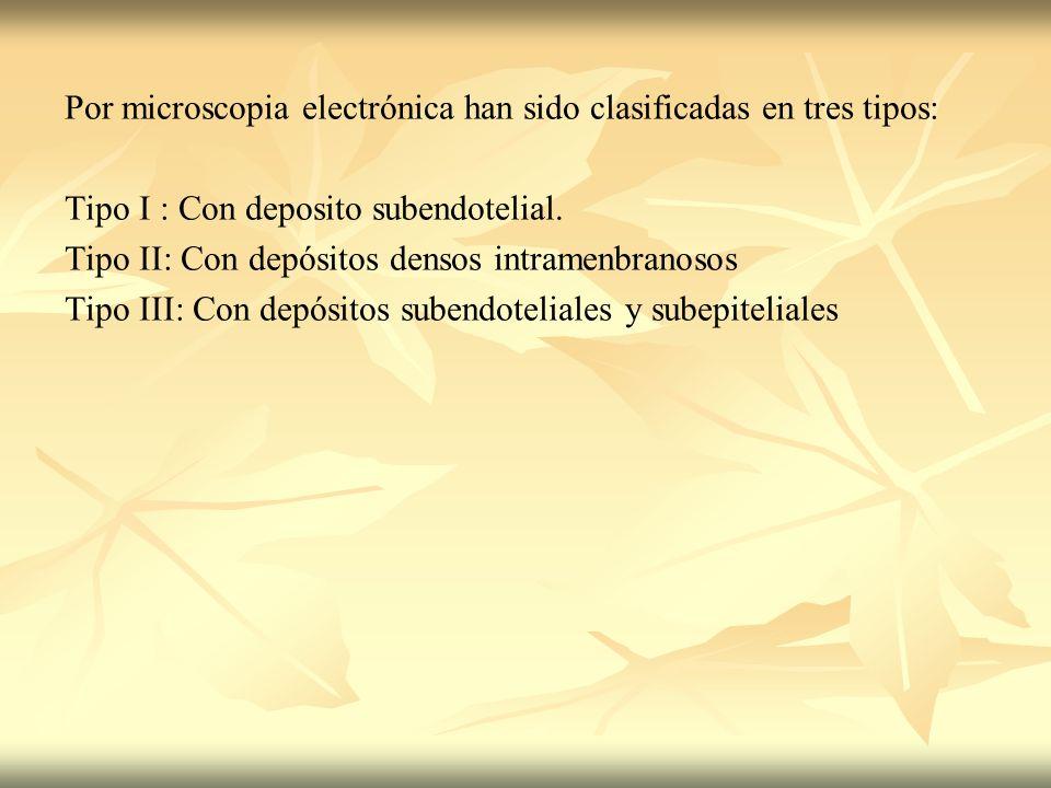 Por microscopia electrónica han sido clasificadas en tres tipos: Tipo I : Con deposito subendotelial. Tipo II: Con depósitos densos intramenbranosos T