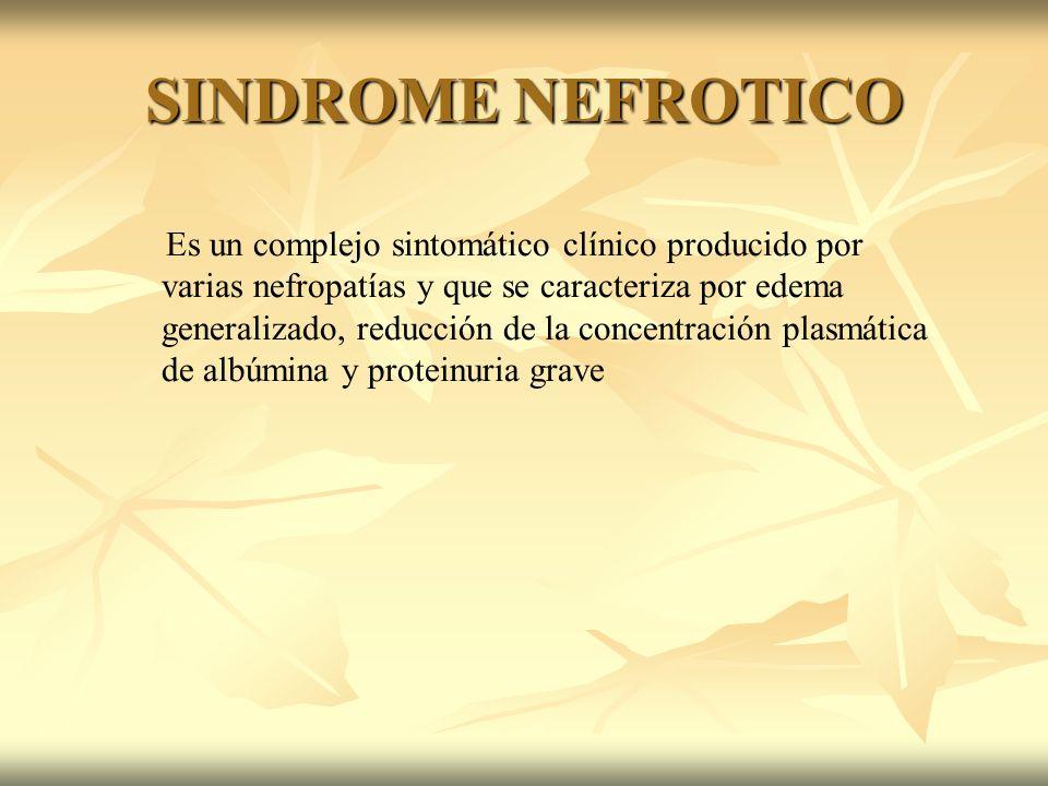 Es un complejo sintomático clínico producido por varias nefropatías y que se caracteriza por edema generalizado, reducción de la concentración plasmát