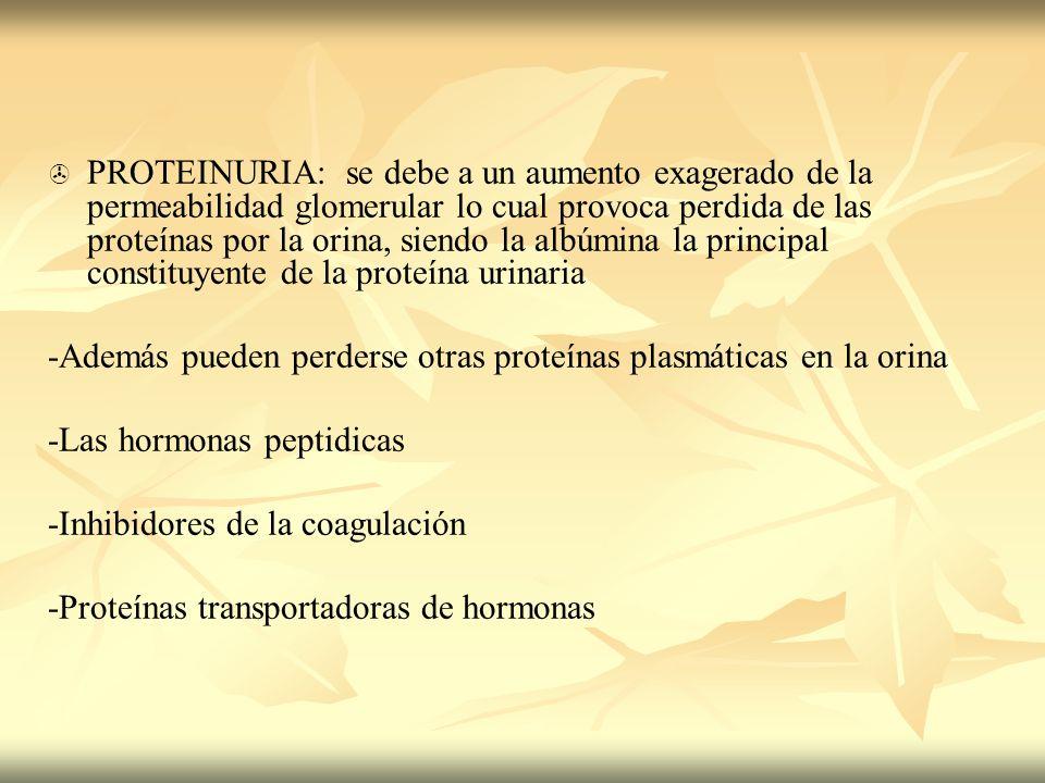 PROTEINURIA: se debe a un aumento exagerado de la permeabilidad glomerular lo cual provoca perdida de las proteínas por la orina, siendo la albúmina l