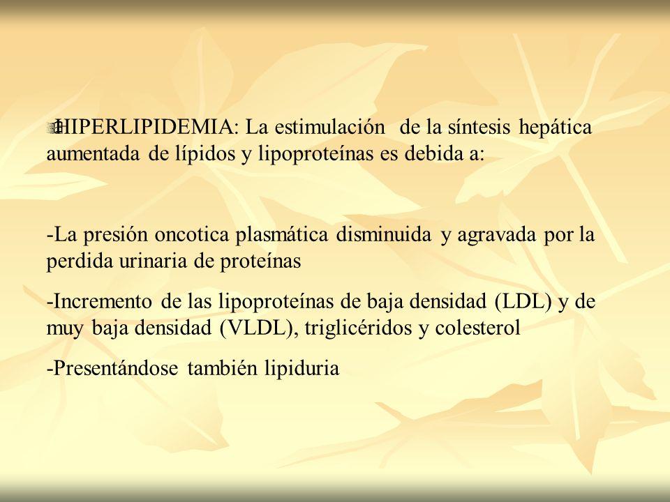 HIPERLIPIDEMIA: La estimulación de la síntesis hepática aumentada de lípidos y lipoproteínas es debida a: -La presión oncotica plasmática disminuida y