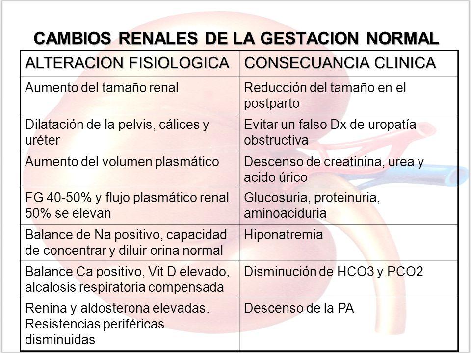 CAMBIOS RENALES DE LA GESTACION NORMAL ALTERACION FISIOLOGICA CONSECUANCIA CLINICA Aumento del tamaño renalReducción del tamaño en el postparto Dilata