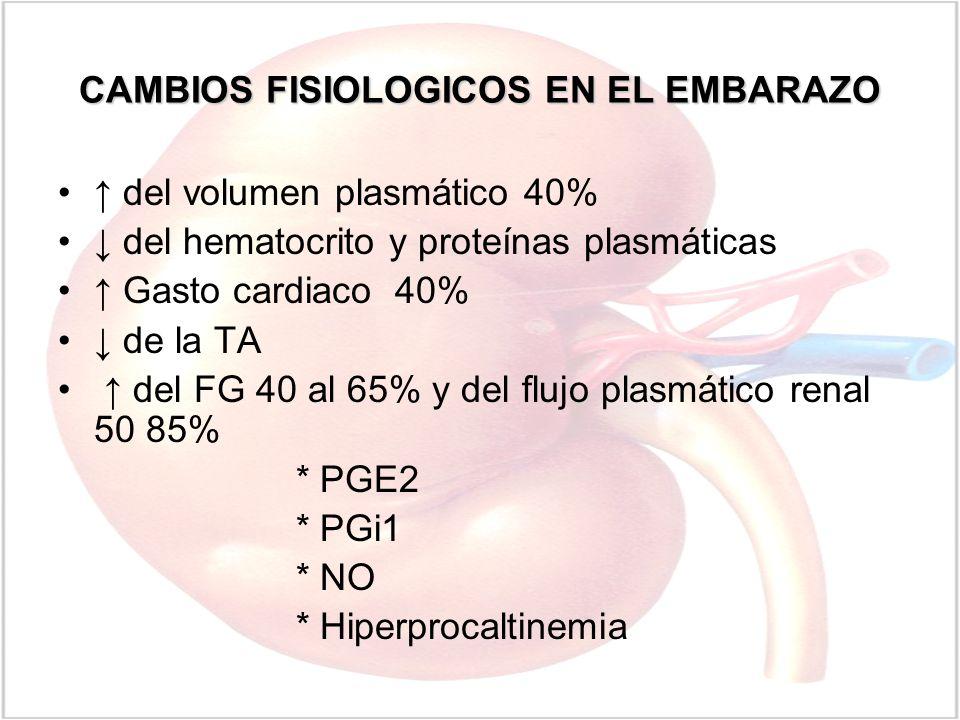 CAMBIOS FISIOLOGICOS EN EL EMBARAZO del volumen plasmático 40% del hematocrito y proteínas plasmáticas Gasto cardiaco 40% de la TA del FG 40 al 65% y