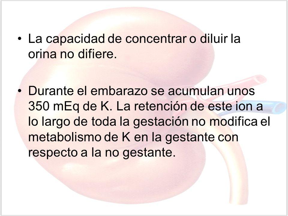 La capacidad de concentrar o diluir la orina no difiere. Durante el embarazo se acumulan unos 350 mEq de K. La retención de este ion a lo largo de tod