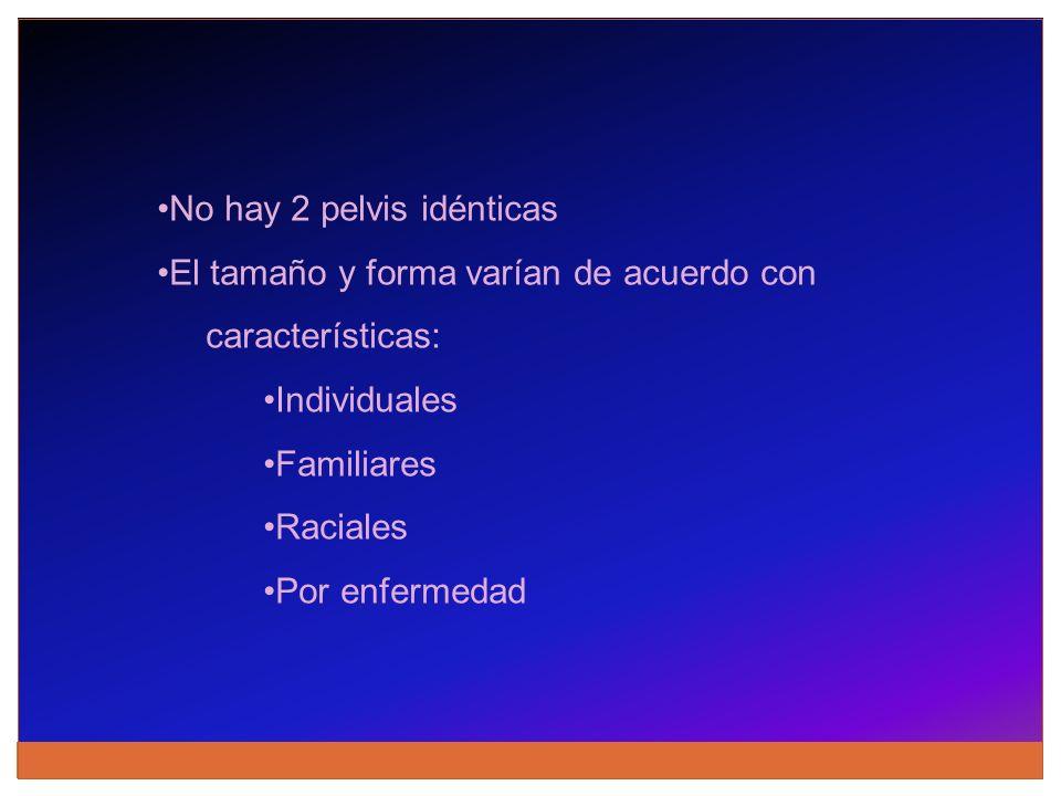 No hay 2 pelvis idénticas El tamaño y forma varían de acuerdo con características: Individuales Familiares Raciales Por enfermedad