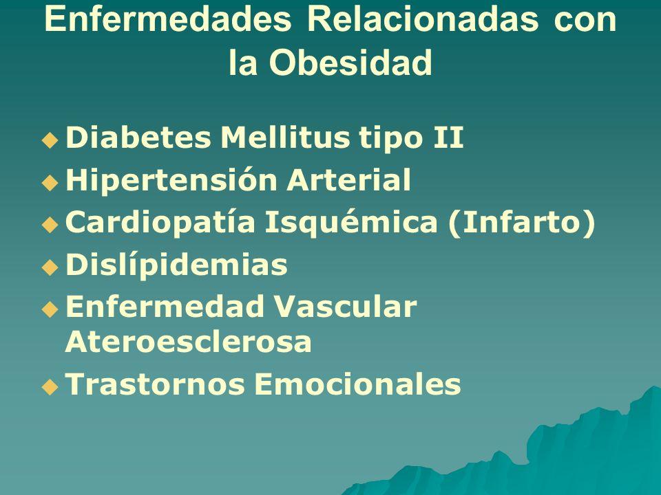 Enfermedades Relacionadas con la Obesidad Diabetes Mellitus tipo II Hipertensión Arterial Cardiopatía Isquémica (Infarto) Dislípidemias Enfermedad Vas