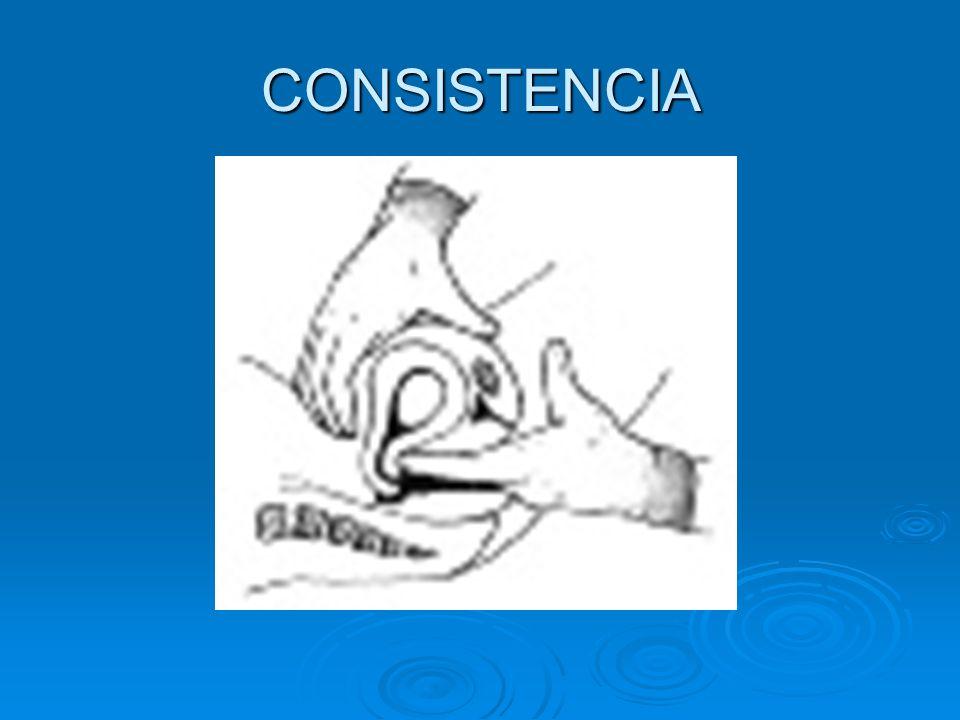 CONSISTENCIA CONSISTENCIA