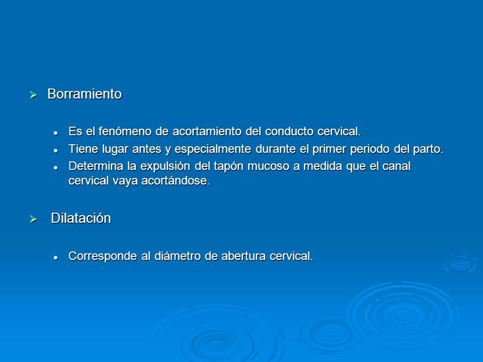 Borramiento Borramiento Es el fenómeno de acortamiento del conducto cervical.