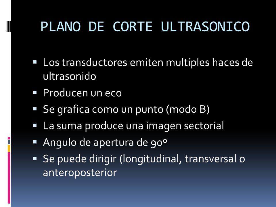 PLANO DE CORTE ULTRASONICO Los transductores emiten multiples haces de ultrasonido Producen un eco Se grafica como un punto (modo B) La suma produce u