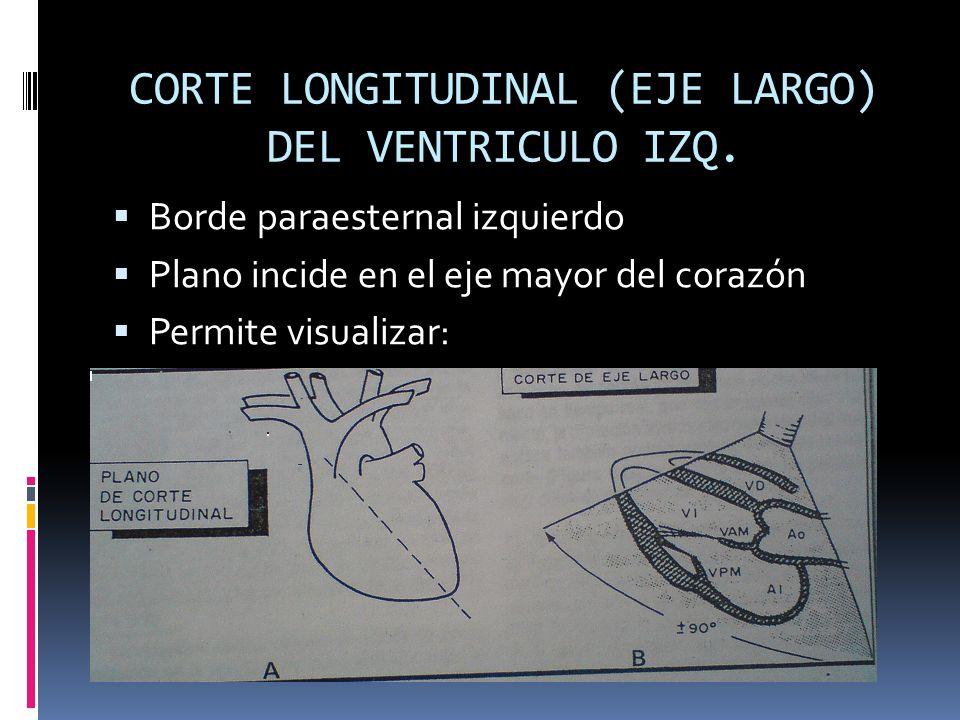 CORTE LONGITUDINAL (EJE LARGO) DEL VENTRICULO IZQ. Borde paraesternal izquierdo Plano incide en el eje mayor del corazón Permite visualizar: