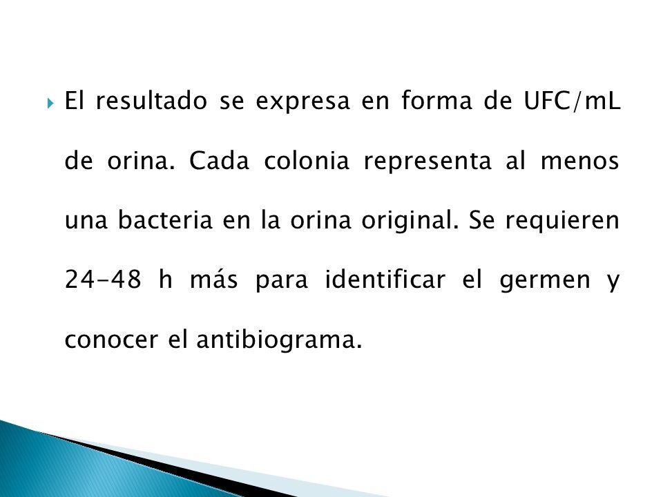 El resultado se expresa en forma de UFC/mL de orina. Cada colonia representa al menos una bacteria en la orina original. Se requieren 24-48 h más para