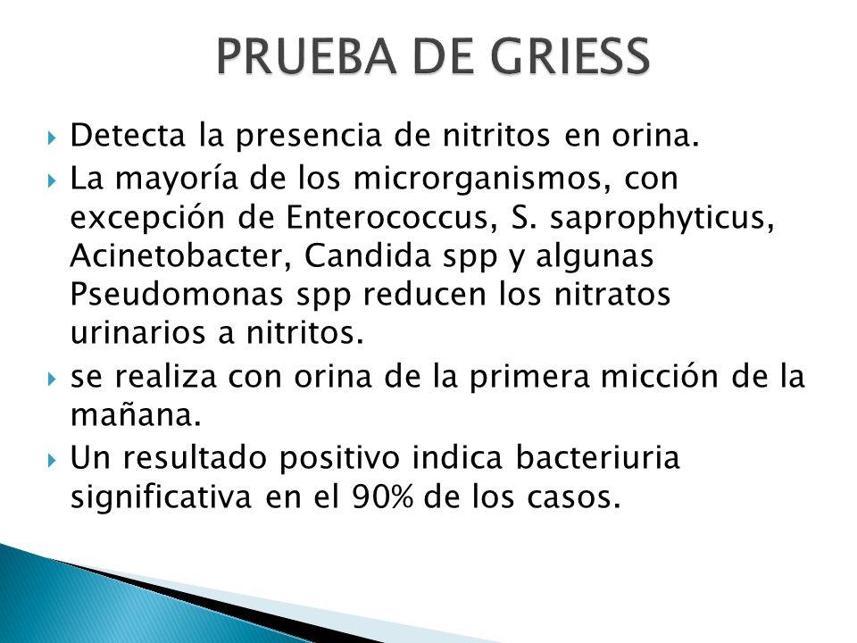 Detecta la presencia de nitritos en orina. La mayoría de los microrganismos, con excepción de Enterococcus, S. saprophyticus, Acinetobacter, Candida s