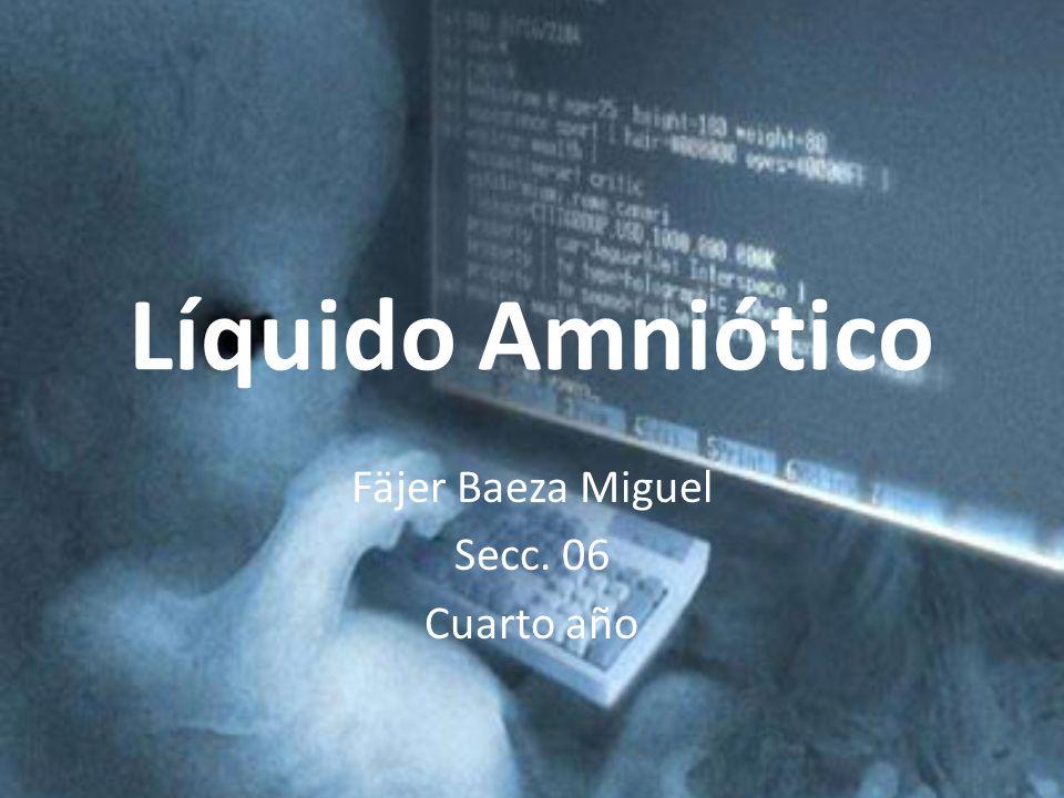 Líquido Amniótico Fäjer Baeza Miguel Secc. 06 Cuarto año