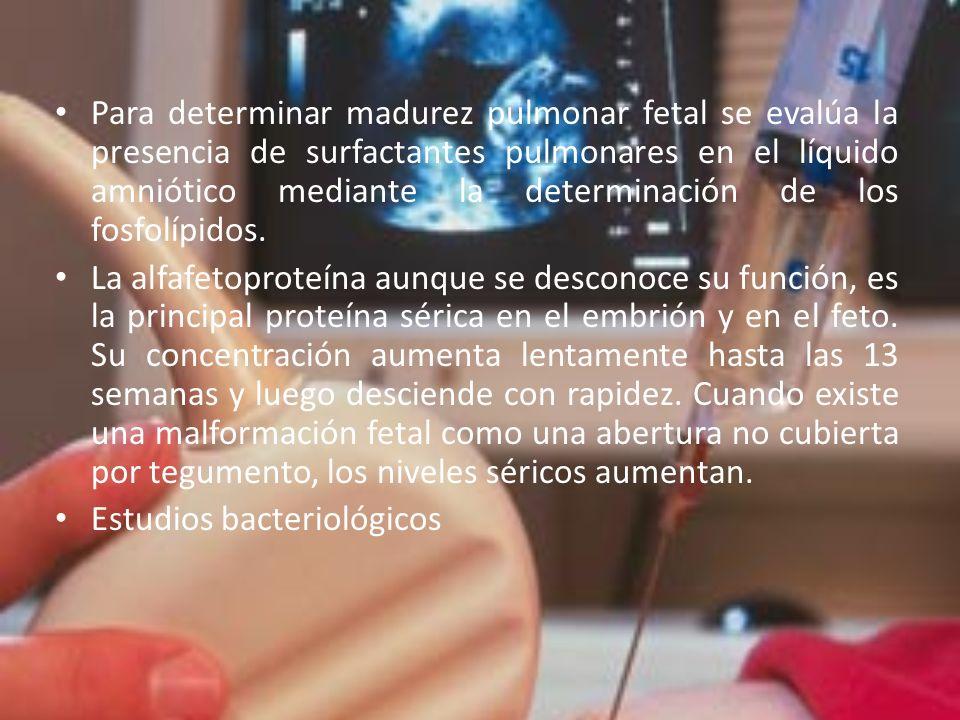 Para determinar madurez pulmonar fetal se evalúa la presencia de surfactantes pulmonares en el líquido amniótico mediante la determinación de los fosf