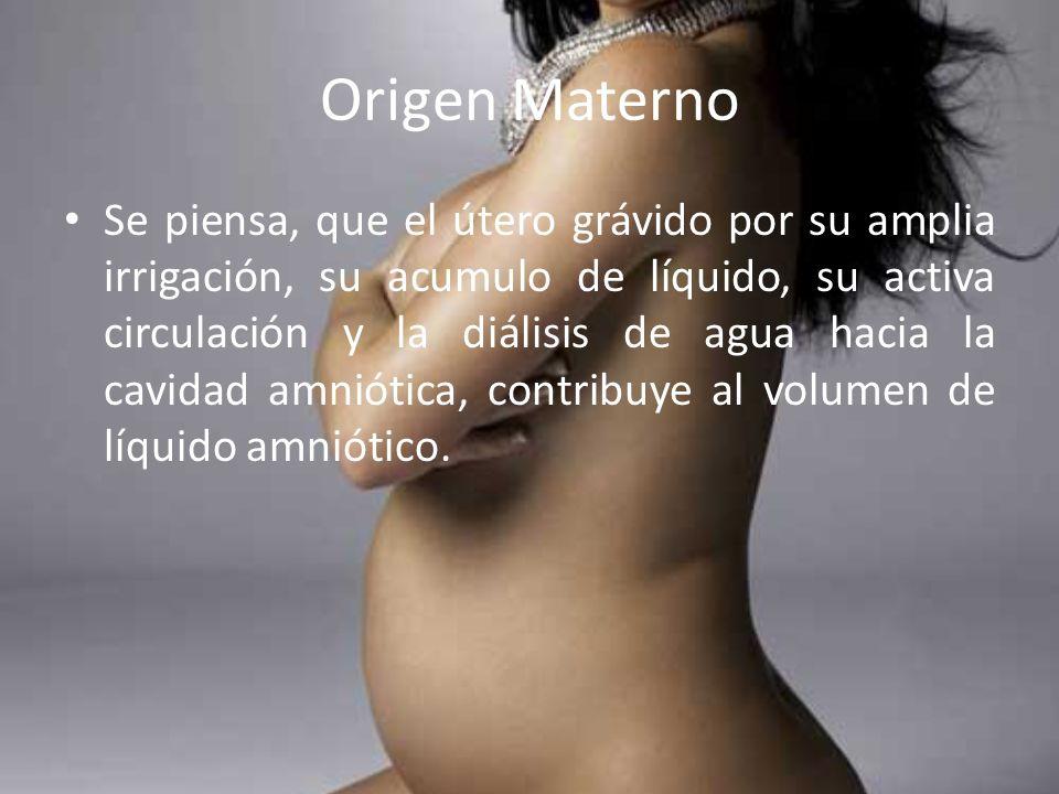 Origen Materno Se piensa, que el útero grávido por su amplia irrigación, su acumulo de líquido, su activa circulación y la diálisis de agua hacia la c