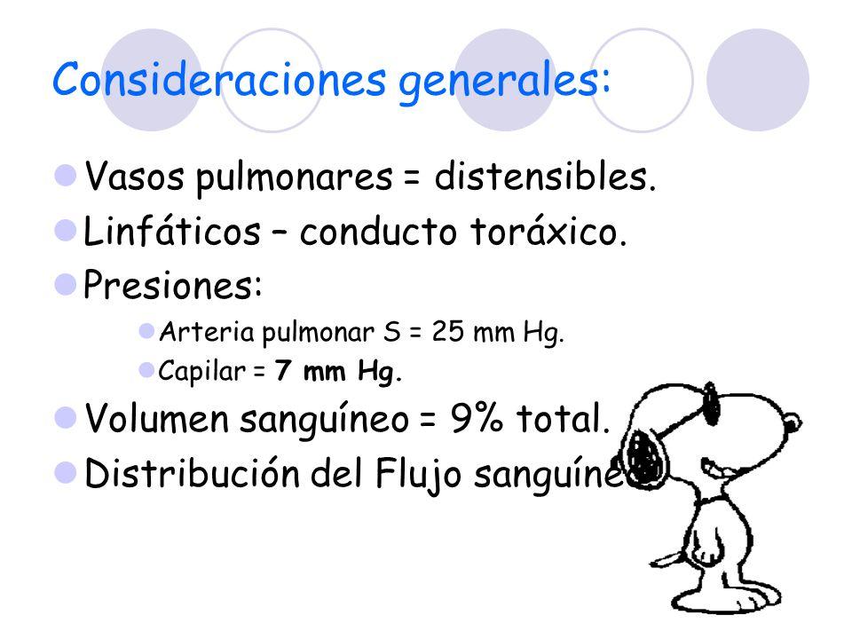 Consideraciones generales: Vasos pulmonares = distensibles. Linfáticos – conducto toráxico. Presiones: Arteria pulmonar S = 25 mm Hg. Capilar = 7 mm H