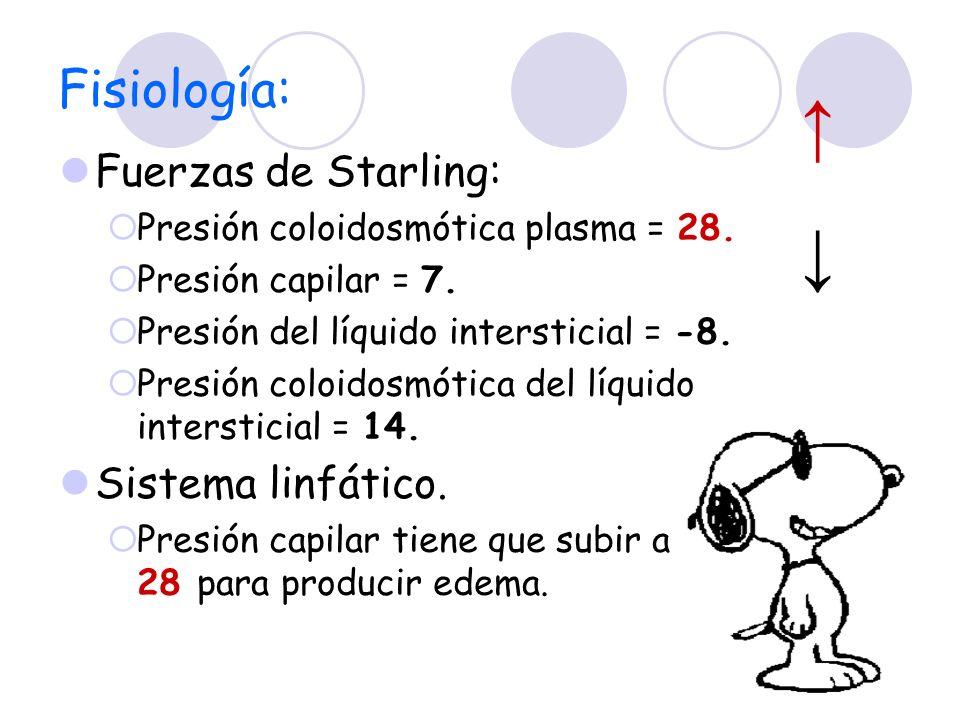 Fisiología: Fuerzas de Starling: Presión coloidosmótica plasma = 28. Presión capilar = 7. Presión del líquido intersticial = -8. Presión coloidosmótic