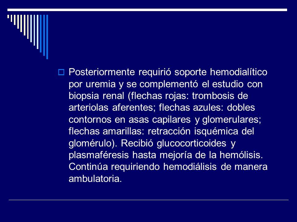 Posteriormente requirió soporte hemodialítico por uremia y se complementó el estudio con biopsia renal (flechas rojas: trombosis de arteriolas aferent