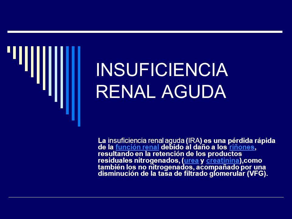 INSUFICIENCIA RENAL AGUDA La insuficiencia renal aguda (IRA) es una pérdida rápida de la función renal debido al daño a los riñones, resultando en la