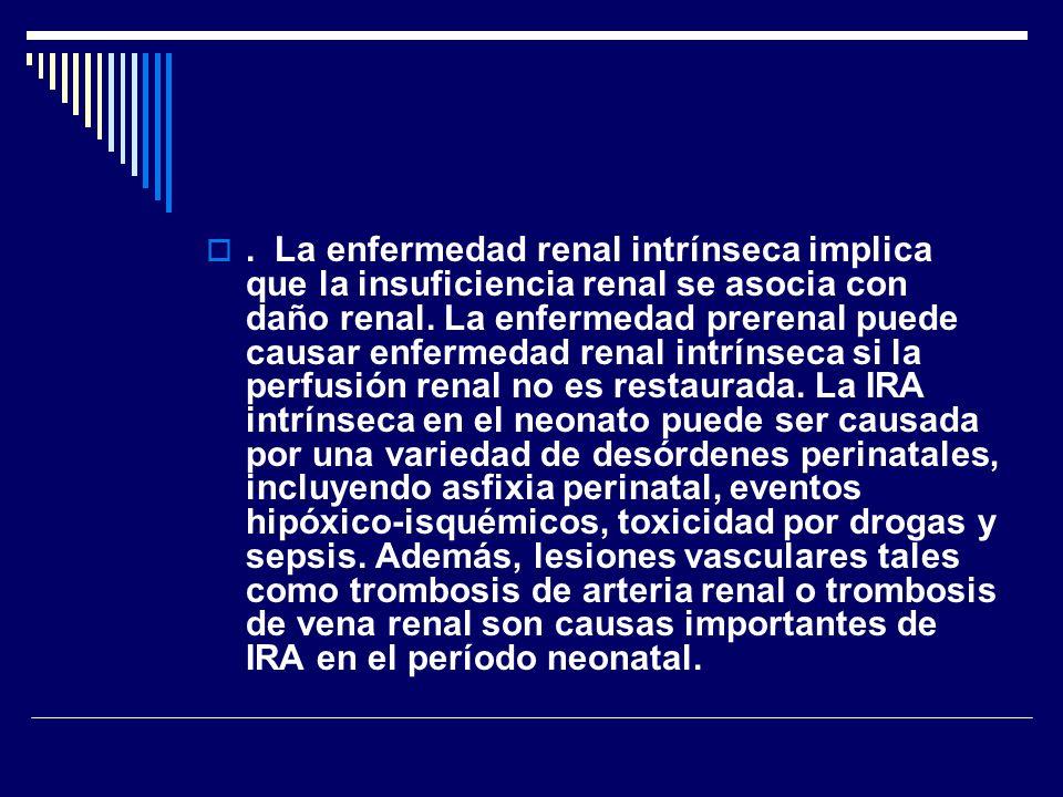. La enfermedad renal intrínseca implica que la insuficiencia renal se asocia con daño renal. La enfermedad prerenal puede causar enfermedad renal int